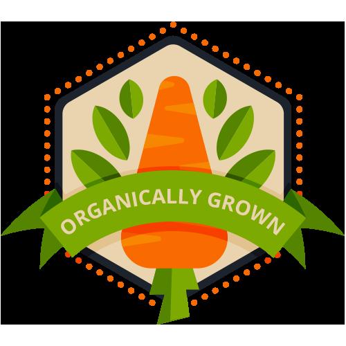 Organic and 100% Natural