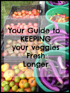 Your guide to keeping your veggies fresh longer