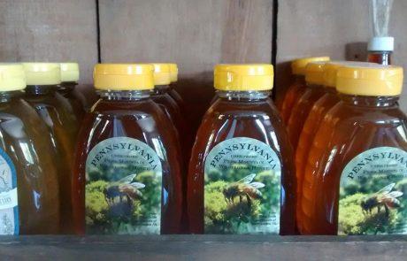 Unfiltered Wildflower Honey