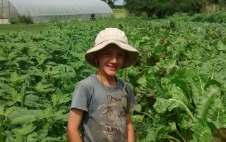 Farm Story 14