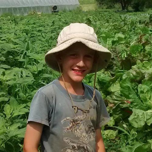 Farm Story 8