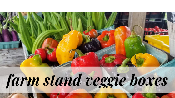 Farm Stand Veggie boxes are an alternative to join a csa