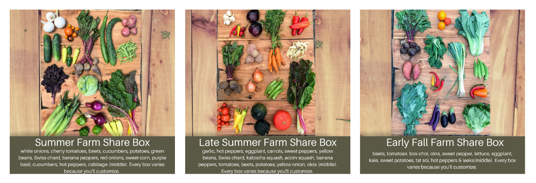 What is a Farm Share CSA? 1