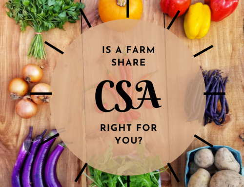 6 Questions You should Answer before Joining a Farm Share